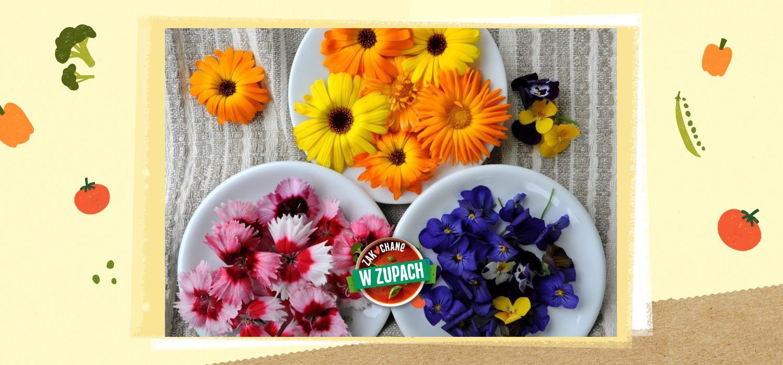 Kwiaty jadalne – nie tylko do wazonu ZWZ WINIARY