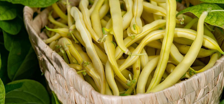 Gotuj sezonowo! Lipiec – kalarepa, fasolka szparagowa i jeżyny