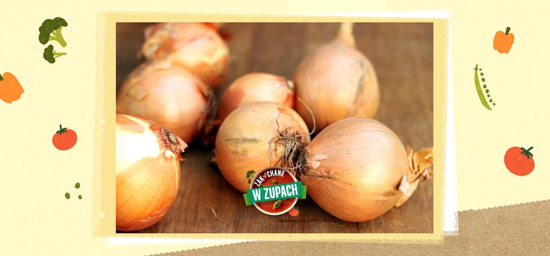 jak pokroić cebulę ZWZ WINIARY