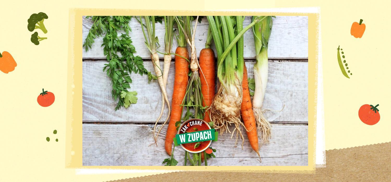 Zupy jako idealny sposób na więcej warzyw w codziennej diecie ZwZ WINIARY